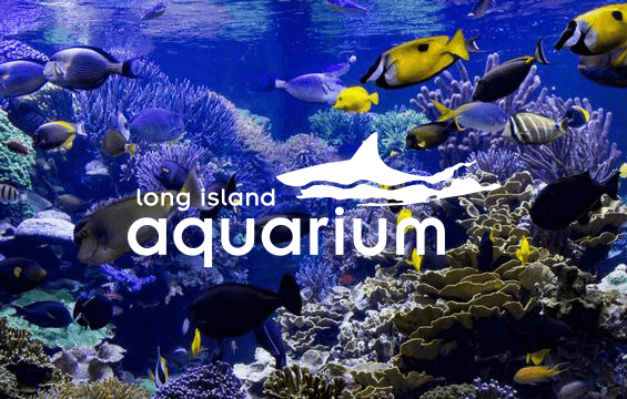 long island aquarium 360x565